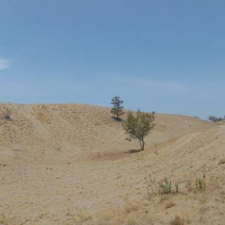 When in Laoag: The La Paz Sand Dunes