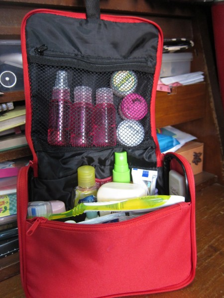 Storage Solutions Toiletry Kit 1