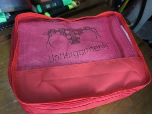 Storage solutions luggage organizer_undies